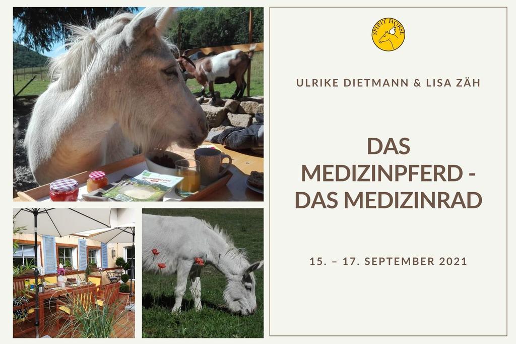 Workshop mit Ulrike Dietmann - das medizinpfer, das medizinrad_