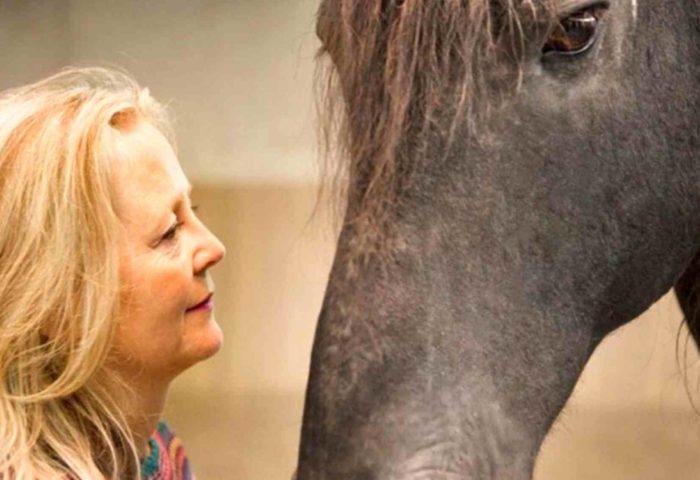 Workshops mit Ulrike Dietmann persönlich